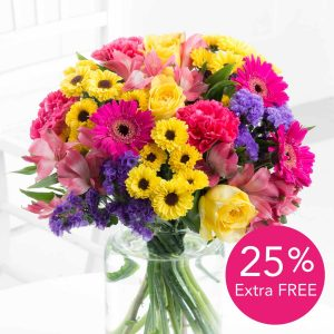 Vibrant Summer + 25% Extra FREE